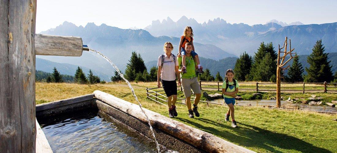 Alpe Fane: Un'escursione in un altro mondo